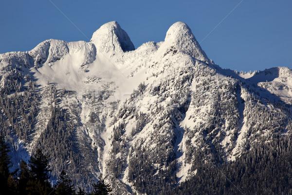 Vancouver iki dağlar İngilizler ufuk çizgisi kar Stok fotoğraf © billperry