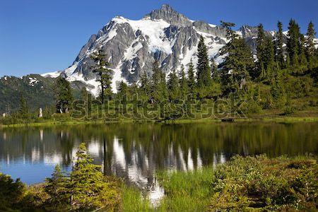 Picture Lake Evergreens Mount Shuksan Washington USA Stock photo © billperry