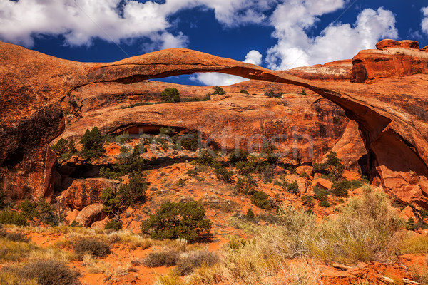 Landschap boog blauwe hemel rock canyon tuin Stockfoto © billperry
