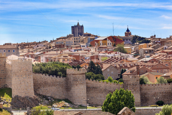 Avila Castle Walls Ancient Medieval City Cityscape Swallows Cast Stock photo © billperry