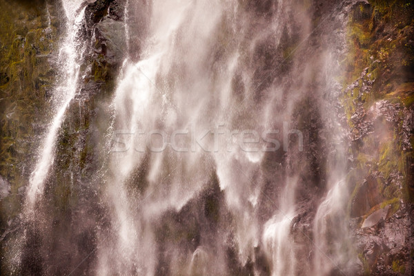 White Water Multnomah Falls Waterfall Abstract Columbia River Go Stock photo © billperry