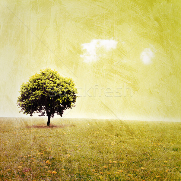 Grunge landschap artistiek rommelig boom gras Stockfoto © Binkski