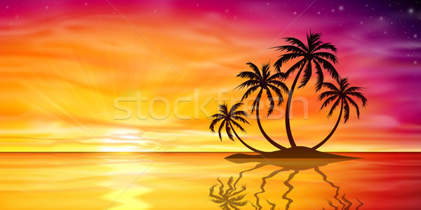 Stockfoto: Zonsondergang · zonsopgang · palmboom · mooie · eiland · palmbomen