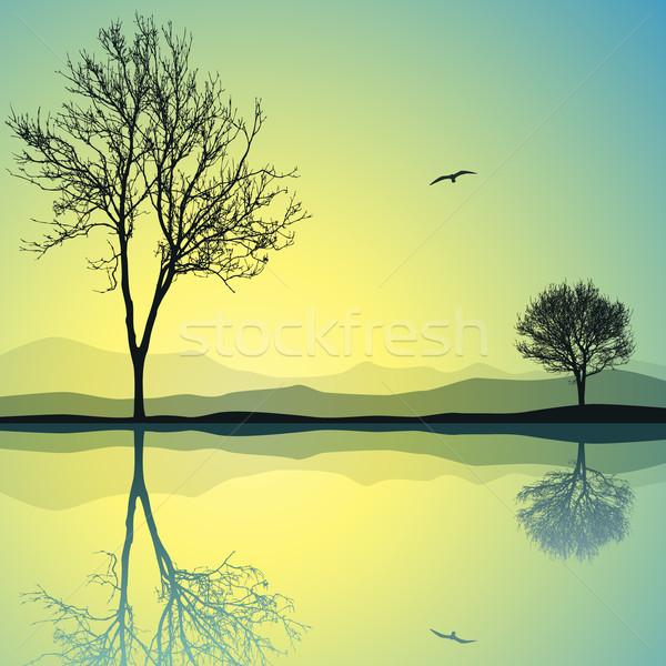 Water Landscape Stock photo © Binkski
