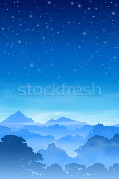 Forestales paisaje brumoso árboles cielo de la noche vector Foto stock © Binkski