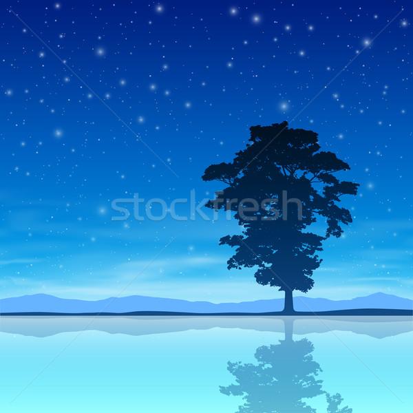 árbol cielo de la noche pie solo reflexión agua Foto stock © Binkski