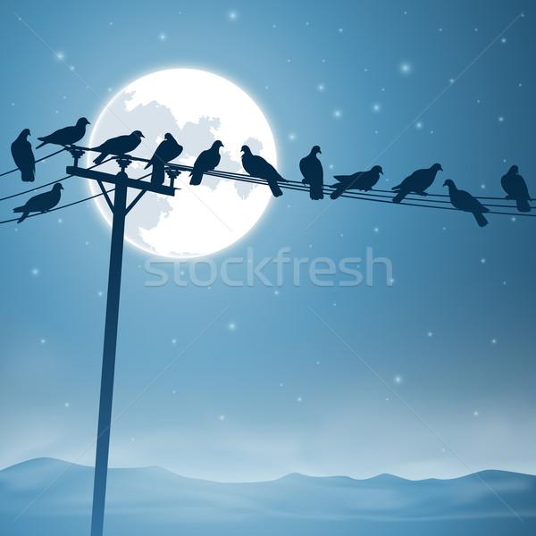 Vogels lijn telefoon lijnen nachtelijke hemel maan Stockfoto © Binkski