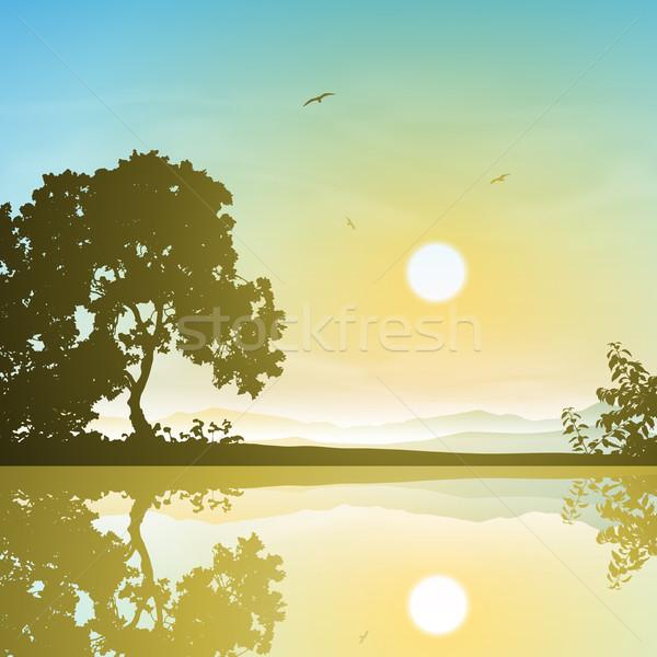 Panorama riflessione tramonto sunrise alberi acqua Foto d'archivio © Binkski