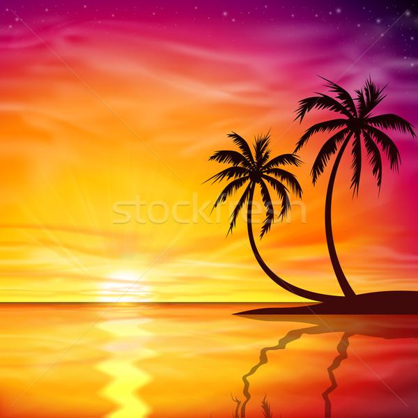 Sunset, Sunrise with Palm Trees Stock photo © Binkski