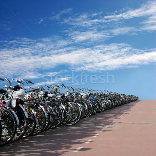 Biciclette lungo fila bicicletta parco Foto d'archivio © Binkski