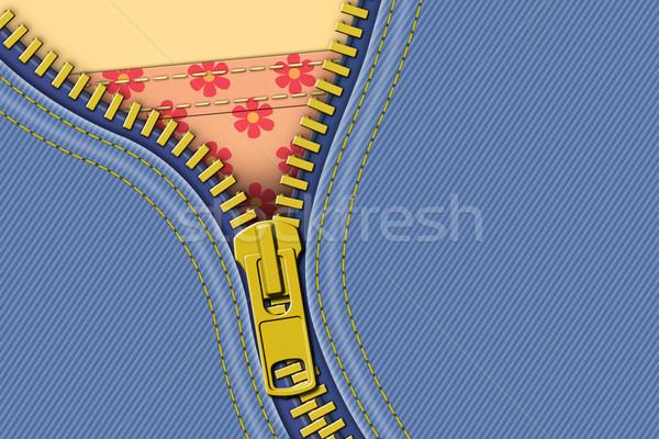 Rits denim illustratie Blauw weefsel jeans Stockfoto © Binkski