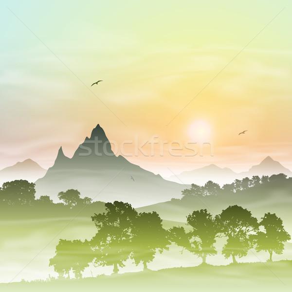 Brumoso forestales paisaje montanas puesta de sol amanecer Foto stock © Binkski
