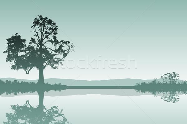 Landscape with Tree Stock photo © Binkski