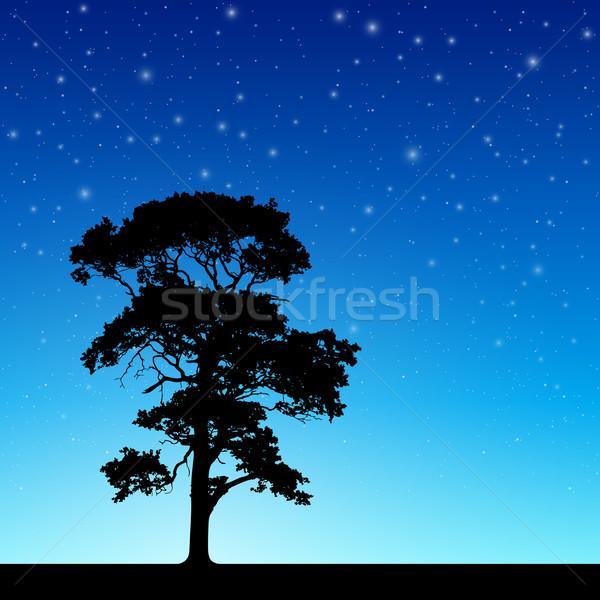 ツリー 夜空 シルエット 星 ベクトル ストックフォト © Binkski