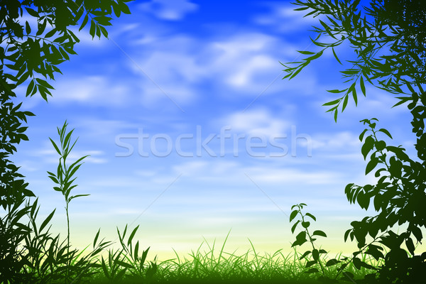 Blue Sky Background Stock photo © Binkski