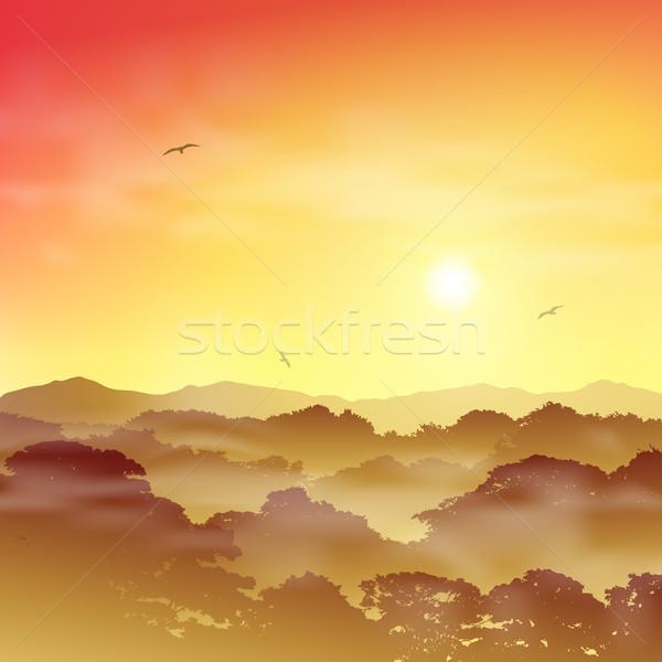 Forest Landscape Stock photo © Binkski