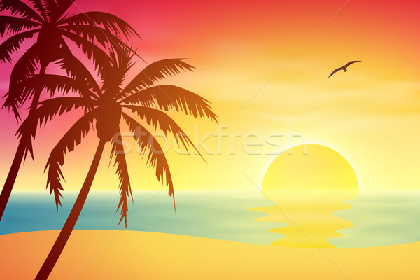 Tropical Sunset Stock photo © Binkski