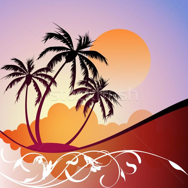 Tropischen Landschaft Gartengestaltung Palmen Sonne Silhouette Stock foto © Binkski