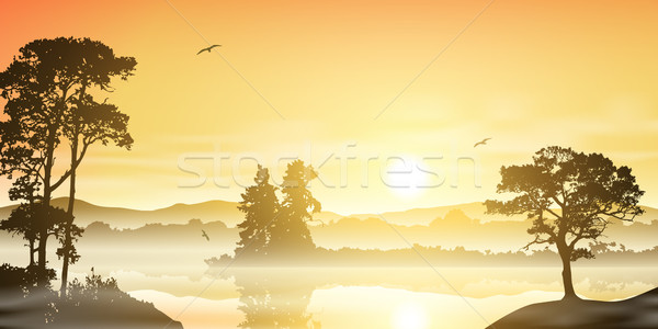 Rivier landschap mistig zonsopgang zonsondergang bomen Stockfoto © Binkski