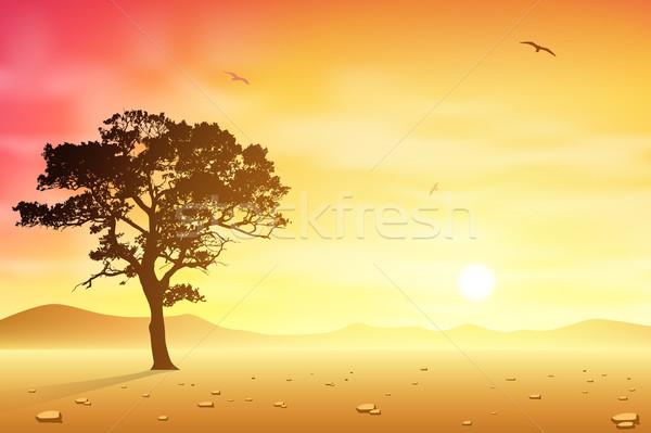 Woestijn landschap boom vogels vogel Stockfoto © Binkski