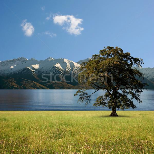Lake Landscape Stock photo © Binkski