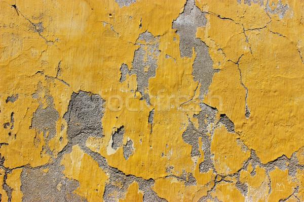 Grunge Wall  Stock photo © Binkski