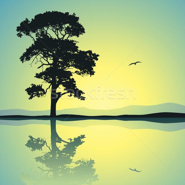 árbol pie solo reflexión agua Foto stock © Binkski