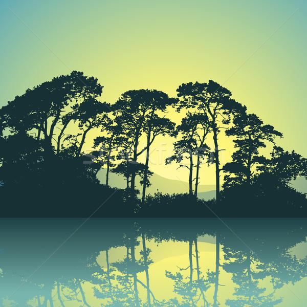 Bomen silhouet reflectie water landschap achtergrond Stockfoto © Binkski