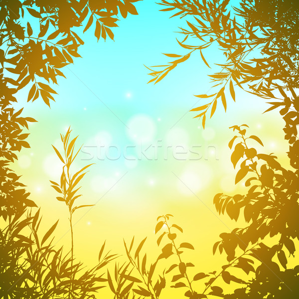 Floral Background Stock photo © Binkski
