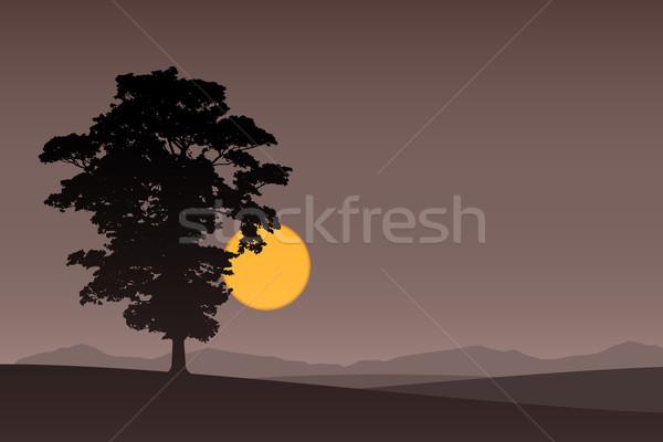 Egyedüli fa sötét naplemente napfelkelte háttér Stock fotó © Binkski
