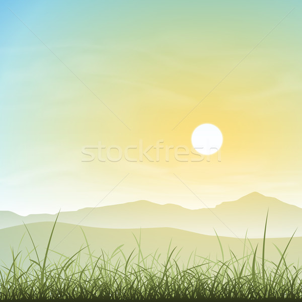 Misty panorama erba tramonto sunrise sole Foto d'archivio © Binkski