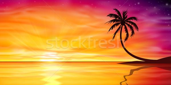Сток-фото: закат · Восход · пальма · красивой · пляж · дерево