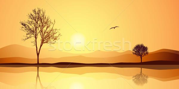 Paysage réflexion deux arbres eau coucher du soleil Photo stock © Binkski