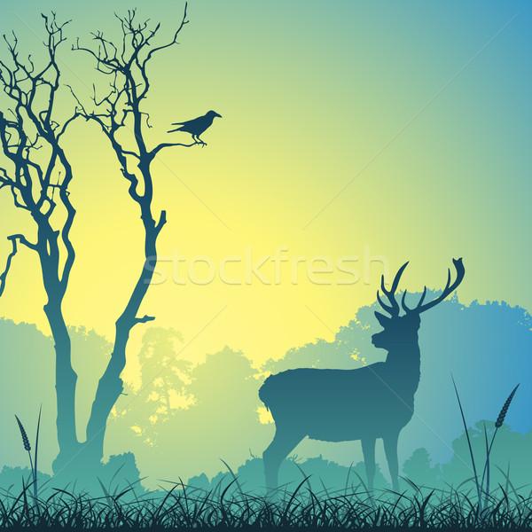 Férfi szarvas legelő fák madár fa Stock fotó © Binkski