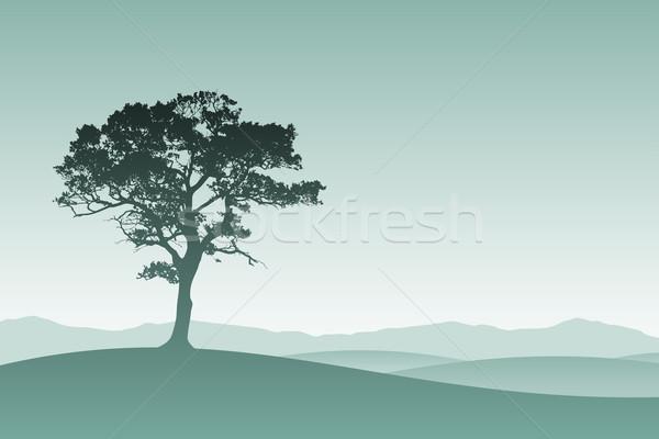 Egyedüli fa sziluett legelő tájkép természet Stock fotó © Binkski