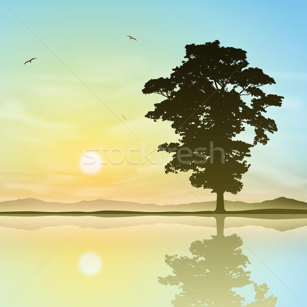 Egyedüli fa áll egyedül tükröződés víz Stock fotó © Binkski