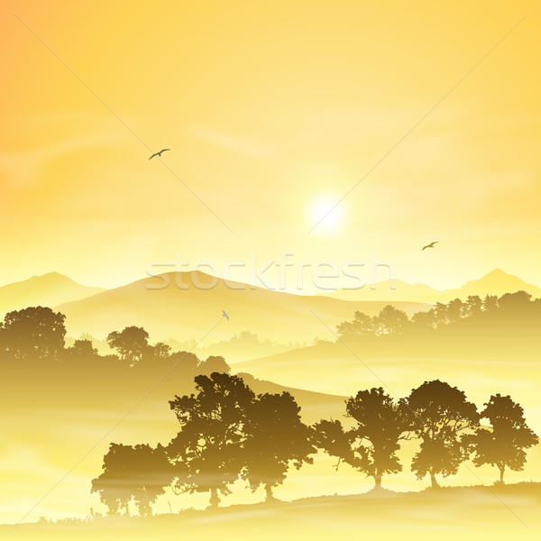 Puslu manzara gündoğumu gün batımı orman Stok fotoğraf © Binkski