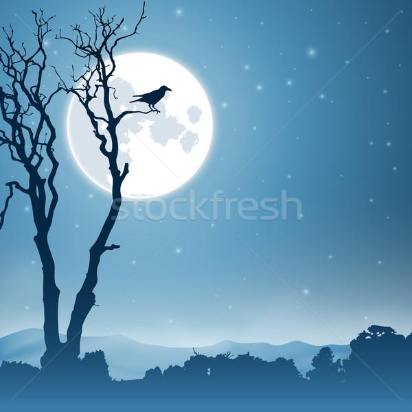 Night Landscape Stock photo © Binkski