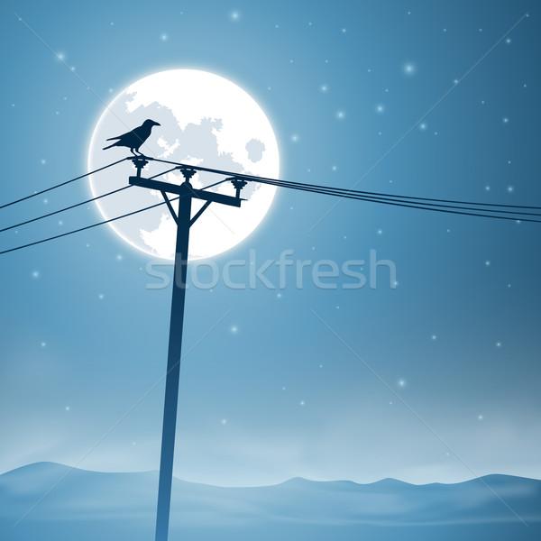 Téléphone lignes oiseau lune étoiles ciel Photo stock © Binkski