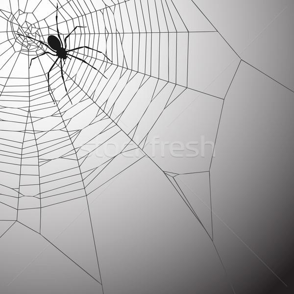 Сток-фото: Spider · паутина · дизайна · веб · черный · силуэта