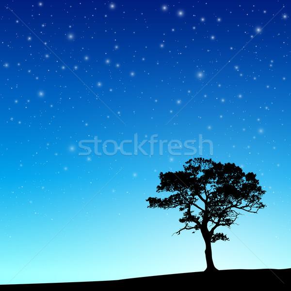Drzewo nieba sylwetka gwiazdki wektora Zdjęcia stock © Binkski