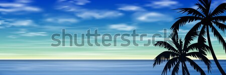 Palmeras cielo azul mar océano vector eps Foto stock © Binkski