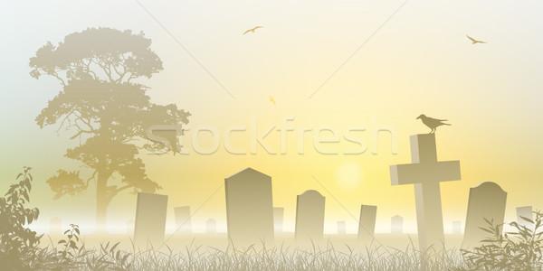Brumoso cementerio cementerio árboles amanecer niebla Foto stock © Binkski