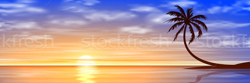 Stock photo: Sunset, Sunrise with Palm Tree