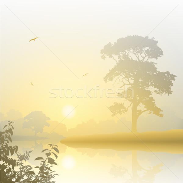 Puslu manzara nehir gündoğumu gün batımı ağaç Stok fotoğraf © Binkski