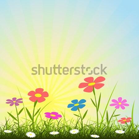 Bloem eenvoudige grunge bloemen gras plant Stockfoto © Binkski