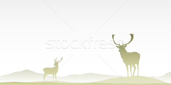 Two Male Stag Deers Stock photo © Binkski