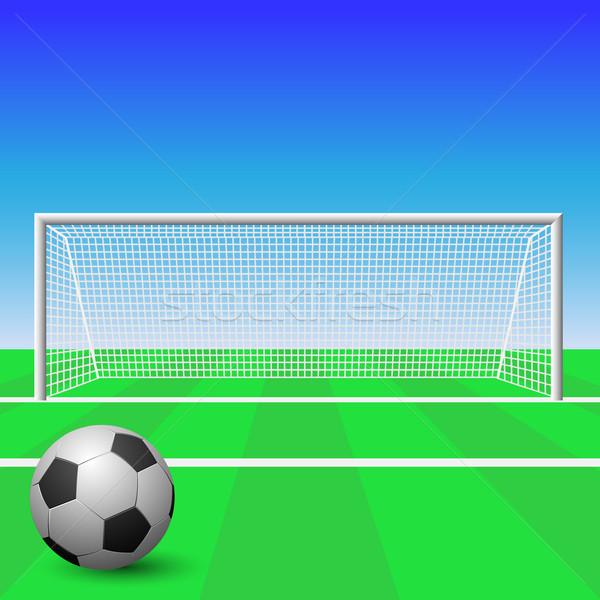 Fußball Ziel Ball Gras Bereich Stock foto © Binkski