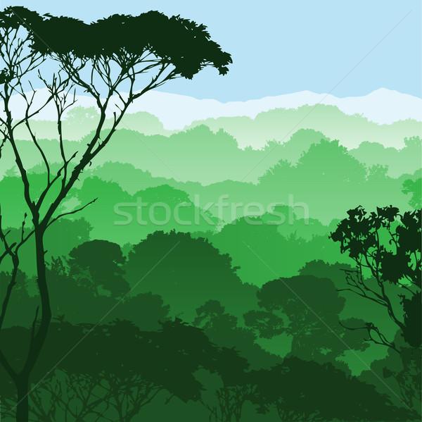 Bos landschap groene bomen achtergrond silhouet Stockfoto © Binkski