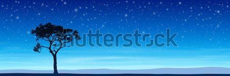 Arbre ciel de la nuit silhouette étoiles vecteur Photo stock © Binkski